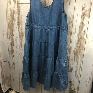 Dresses & Skirts - Chambray Dress, Plus Size. No tags.  D26